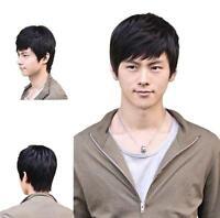 25cm Short Black or Brown Men Straight Fashion Hair Full Fashion Wig Cosplay Wig