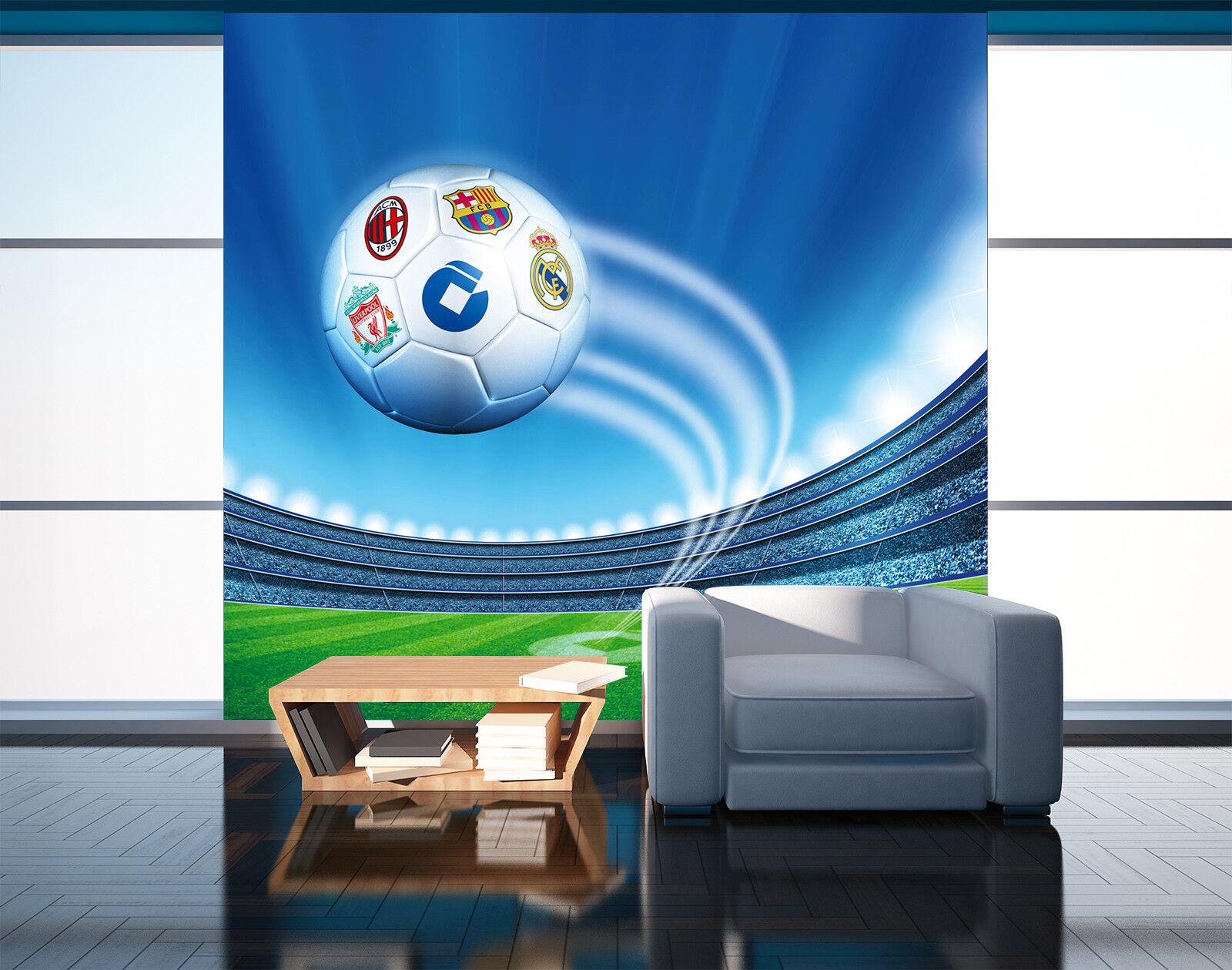 3D Himmel Fußball 503 Tapete Tapeten Mauer Foto Familie Tapete Wandgemälde DE