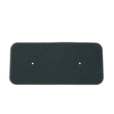 2x Filterschwamm Filter Sponge für Trockner Wärmepumpentrockner ORG.Candy Hoover