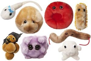 Giant-Microbes-Bacteria-and-Human-Cells-Stuffed-Plush-Toy