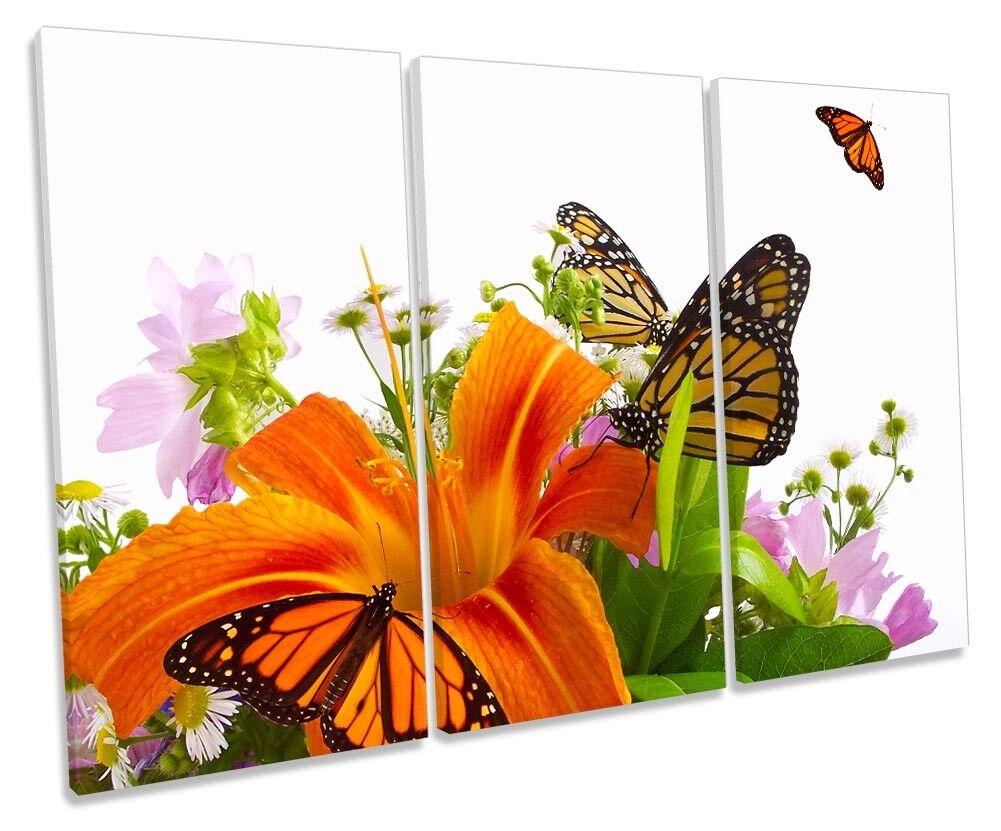 Joyeuses fêtes  Meilleure offre! offre! offre! Floral Butterfly Flowers Picture Treble Canvas Wall Art Print 87b7ae