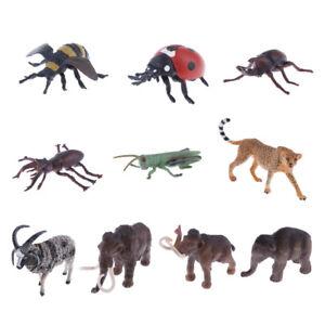 Lifelike Wildlife Animal Model Insect Action Figures Kids Nature Educational Toy