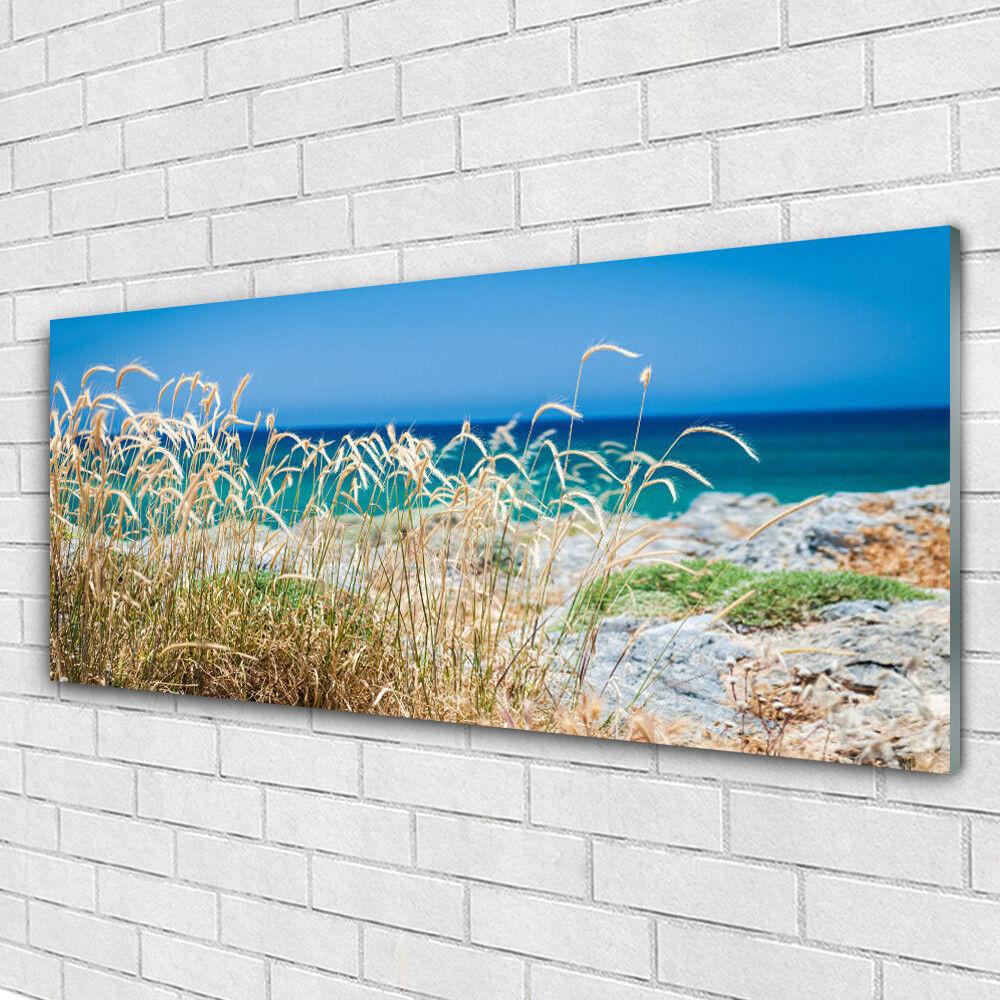 Tableau murale Impression sous verre 125x50 Paysage Plage
