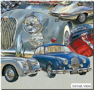Image Is Loading Jaguar Grace E And Pace Fine Art Print