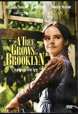 A Tree Grows in Brooklyn DVD - James Dunn Peggy Ann Garner Dorothy Maguire (NEW)