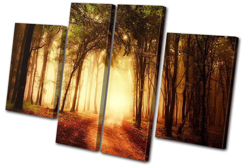 Landscapes Forest Road MULTI Leinwand Wand Kunst Bild drucken