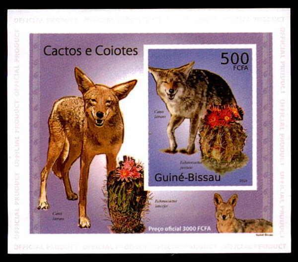 Briefmarken China Mk 2001 Fauna Kamel Camel Maximumkarte Carte Maximum Card Mc Cm Dq82 Wildtiere