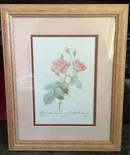 ROSA CENTIFOLIA ANEMONOIDES French Rose Lithograph by Pierre-Joseph Redoute