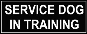 Pair-of-Patches-034-SERVICE-DOG-IN-TRAINING-034