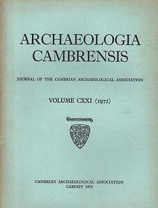ARCHAEOLOGIA CAMBRENSIS 1972 LLANSILIN  CWM YSTTRADLLYN  GOWER  MONTGOMERY - Carmarthen, United Kingdom - ARCHAEOLOGIA CAMBRENSIS 1972 LLANSILIN  CWM YSTTRADLLYN  GOWER  MONTGOMERY - Carmarthen, United Kingdom