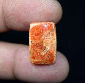 9.45 Cts. Natural American Orange Sponge Coral Gemstone 19*13*4 mm Cushion Cab