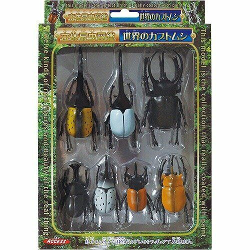 Beetle insect real figure of three-dimensional insect picture book world