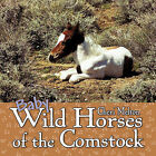 Baby Wild Horses of the Comstock by Cheri Melton (Paperback, 2010)