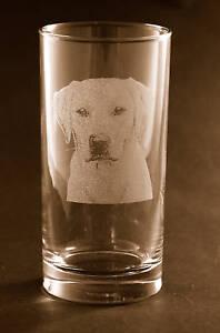 Set of 2 Etched Yellow Labrador Retriever on Tumbler Glasses