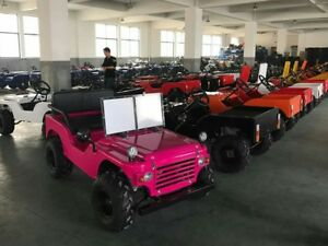 Mini Land Rover, Willys Jeep, off road,Kids jeep,125cc TOT ROD TRADE