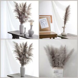 20X Natural Dried Pampas Grass Reed 40-45cm Home Wedding Flower Bunch Decor Gift