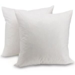 Cheer Collection Set Of Down Feather Throw Pillow Couch Cushion Insert Ebay