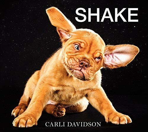 1 of 1 - Shake by Carli Davidson 0062242644 The Cheap Fast Free Post