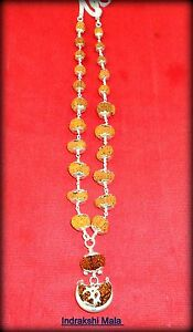 Indrakshi-Mala-Combination-of-1-Mukhi-Rudraksh-to-21-Mukhi-Rudraksha-in-Silver