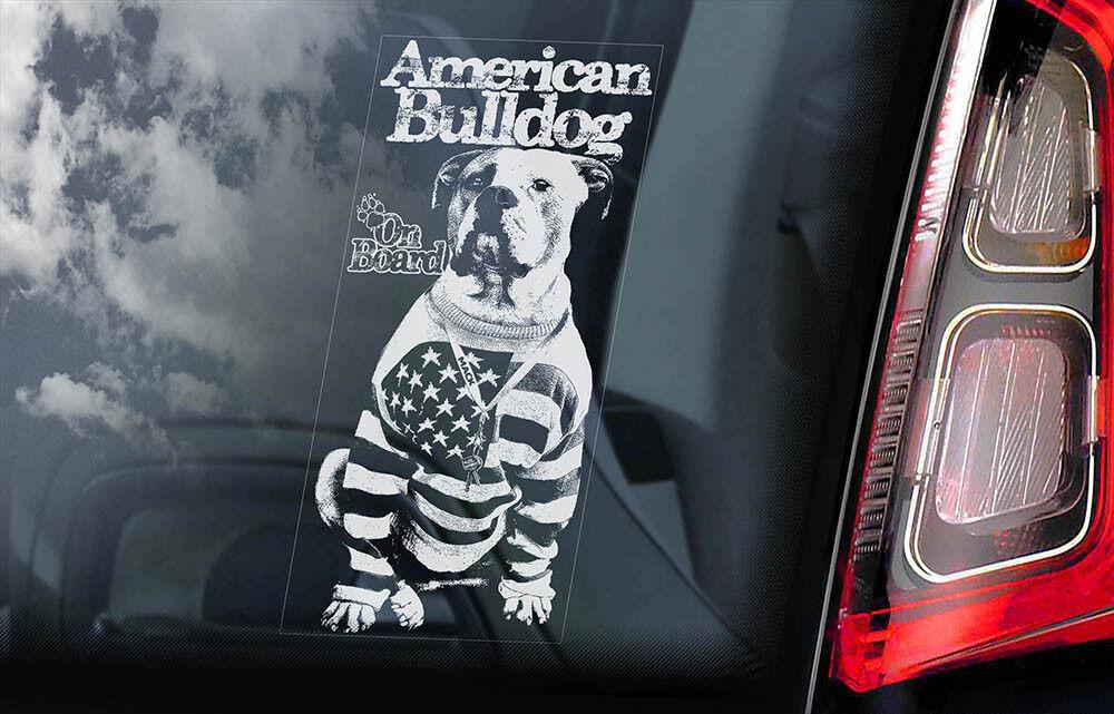 Inglese Bulldog Interno Inversa Stampato Adesivo Finestrino Auto Cane Insegna V01