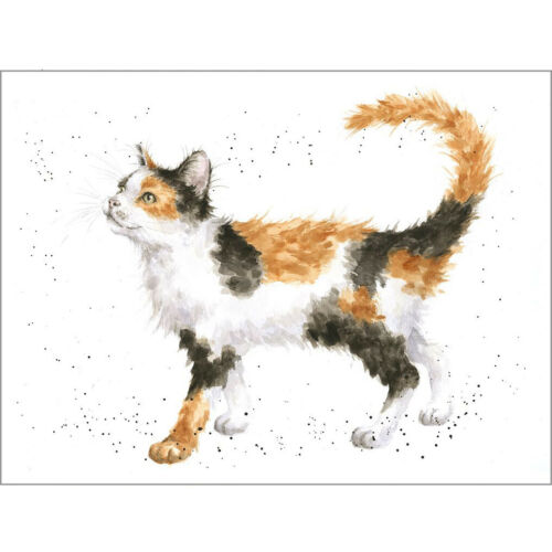 CALICO CAT - WD-C-ACS143 Cat Wrendale Designs Greeting Card