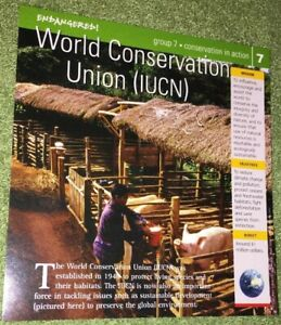 Endangered-Species-Animal-Card-Conservation-In-Action-World-Conservation-Union