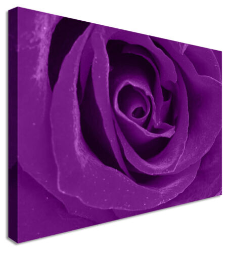 Purple Velvet Love Floral Flower CANVAS Wall Art Picture ANY SIZE