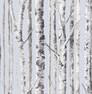 Image Is Loading Birch Tree Wallpaper With A Blue Background White