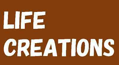 LIFECREATIONS.seller