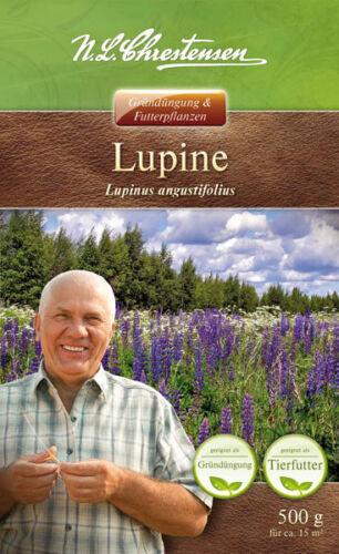 Lupine /'Boruta/' Lupinus angustifolius 500 g Bienenweide Gründüngung 13700612