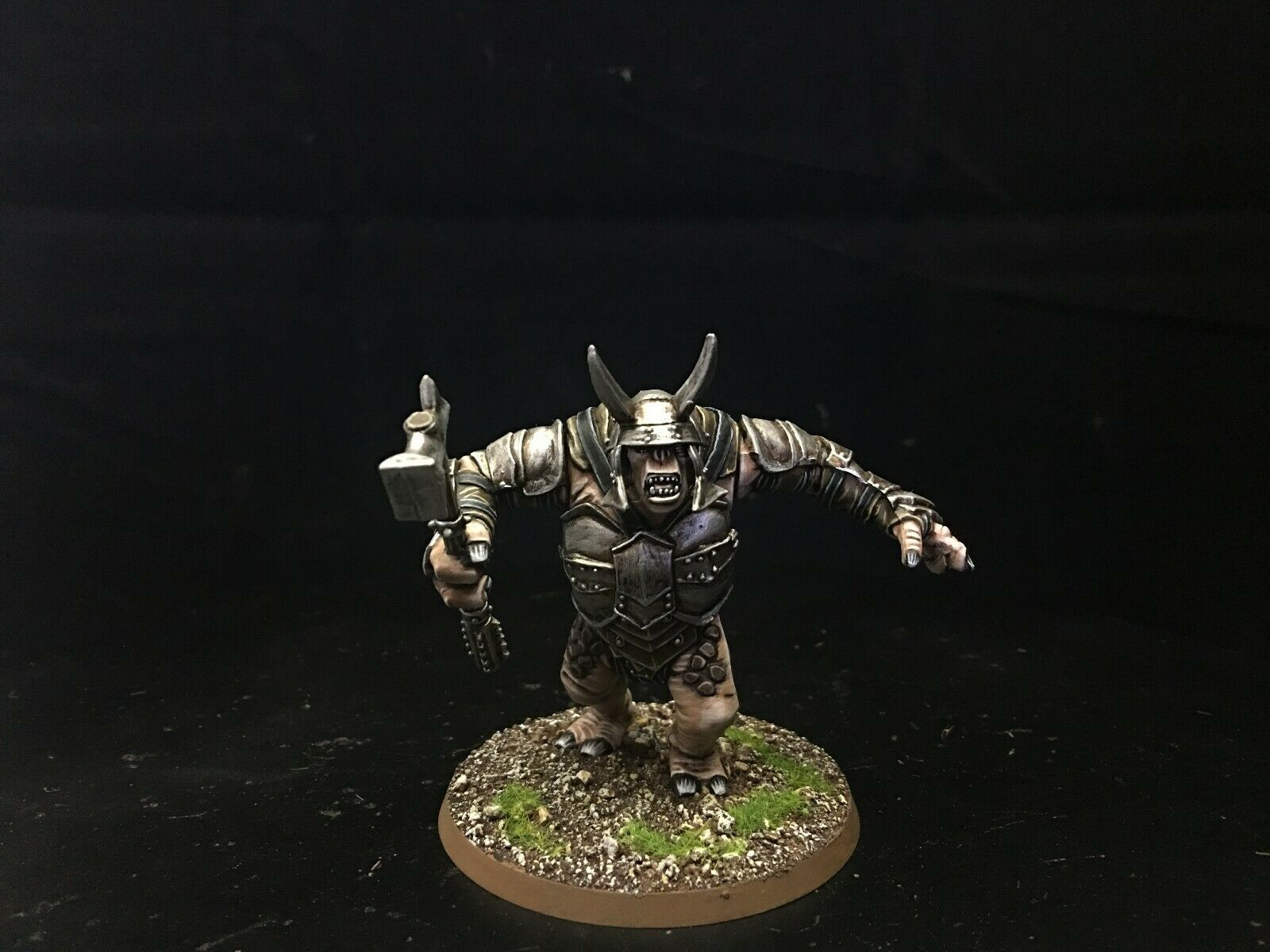 25mm Lord of the Rings DPS Painted Mordor Troll  AP6738