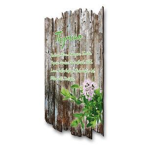 Details zu Thymian Kräuter Gewürz Bild Shabby aus Holz Wand Deko für Küche  30x20cm