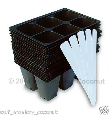 Seedling Starter Trays: 144 Cells + 5 Plant Labels Seed Germination Flats Garden