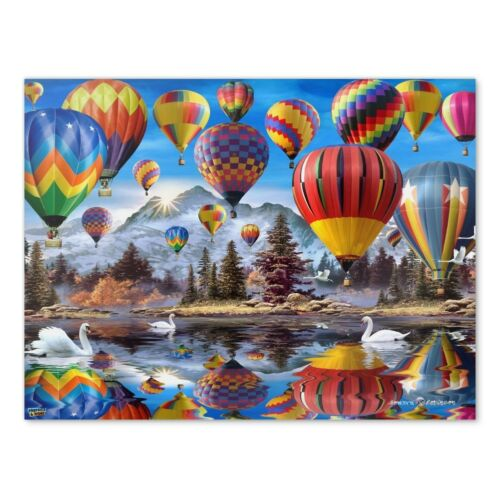 Hot Air Balloons Mountain Reflections Home Business Office Sign