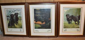 Nigel-Hemming-WORK-REST-amp-PLAY-SET-Framed-Black-Labradors-Labs-Gun-Dogs-Art