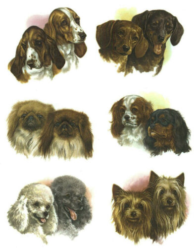 Dog Dachshund Bassett Poodle Yorkie Select-A-Size Waterslide Ceramic Decals Bx