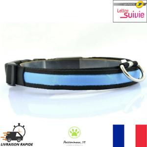 Collier-Nylon-Lumineux-a-Led-Bleu-pour-Chien-ou-Chat-XS-S-M-L-XL-Neuf-FR
