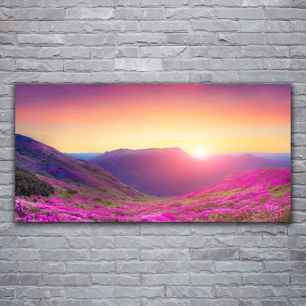 Verre Imprimer Wall Art Image 120x60 photo Sun Mountain Meadow Nature