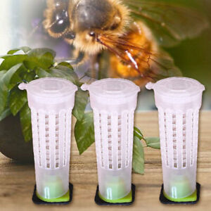 30x-Beekeeping-Rearing-Cup-Kit-Queen-Bee-Cages-Beekeeper-Equipment-Tool-Roller