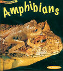 Amphibians by Rod Theodorou (Paperback, 2000)