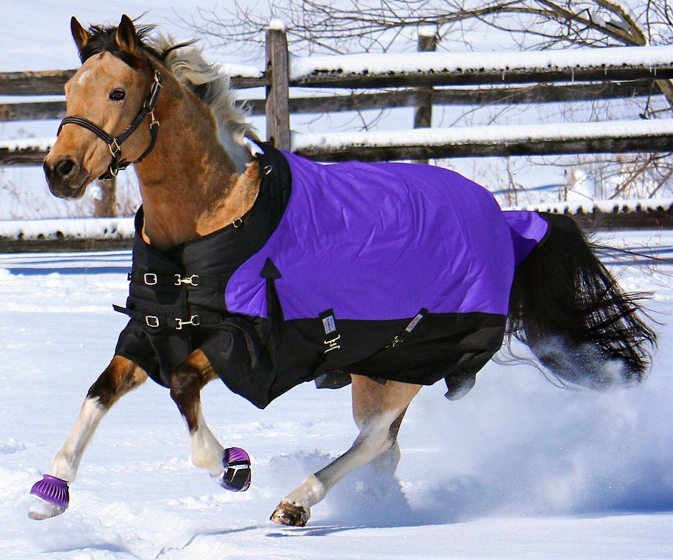 Winter Turnout Blanket - lila - 1200D - 380 Grams-Storm Shield Contour Collar