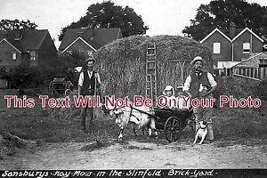 SX-80-Sansburys-Hay-Mow-In-Slinfold-Brickyard-Sussex-6x4-Photo