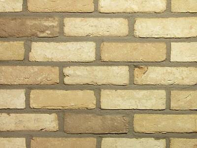 PüNktlich Retro Feldbrandriemchen Wdf Pastellbrand Hell-beige Klinker-riemchen RegelmäßIges TeegeträNk Verbessert Ihre Gesundheit Heimwerker Klinker