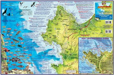 Monterey California Adventure /& Dive Guide Map Laminated Poster by Franko Maps