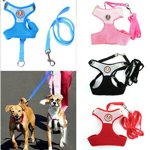 Eg-Hk-Animal-Chien-Chat-Souple-Reglable-Maille-Harnais-Marche-Main-Laisse