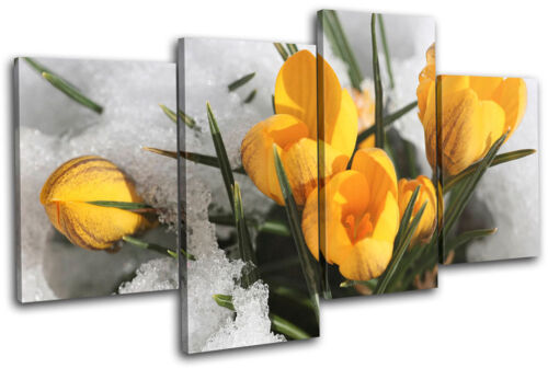 Flowers In Snow Floral MULTI CANVAS WALL ART Picture Print VA
