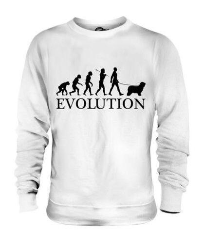 Mit Bart Collie Evolution des  Herrenchen Unisex Pullover Herren Damen Hund