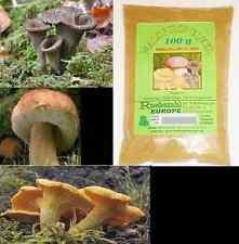 Waldpilz Wildpilz Pulver 100% Steinpilze Pfifferling 100g Würpulver für Pilzsoße