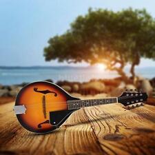 Acoustic Guitars Mandolin Sunburst 8-string With Rosewood Adjustable Bridge 07HS