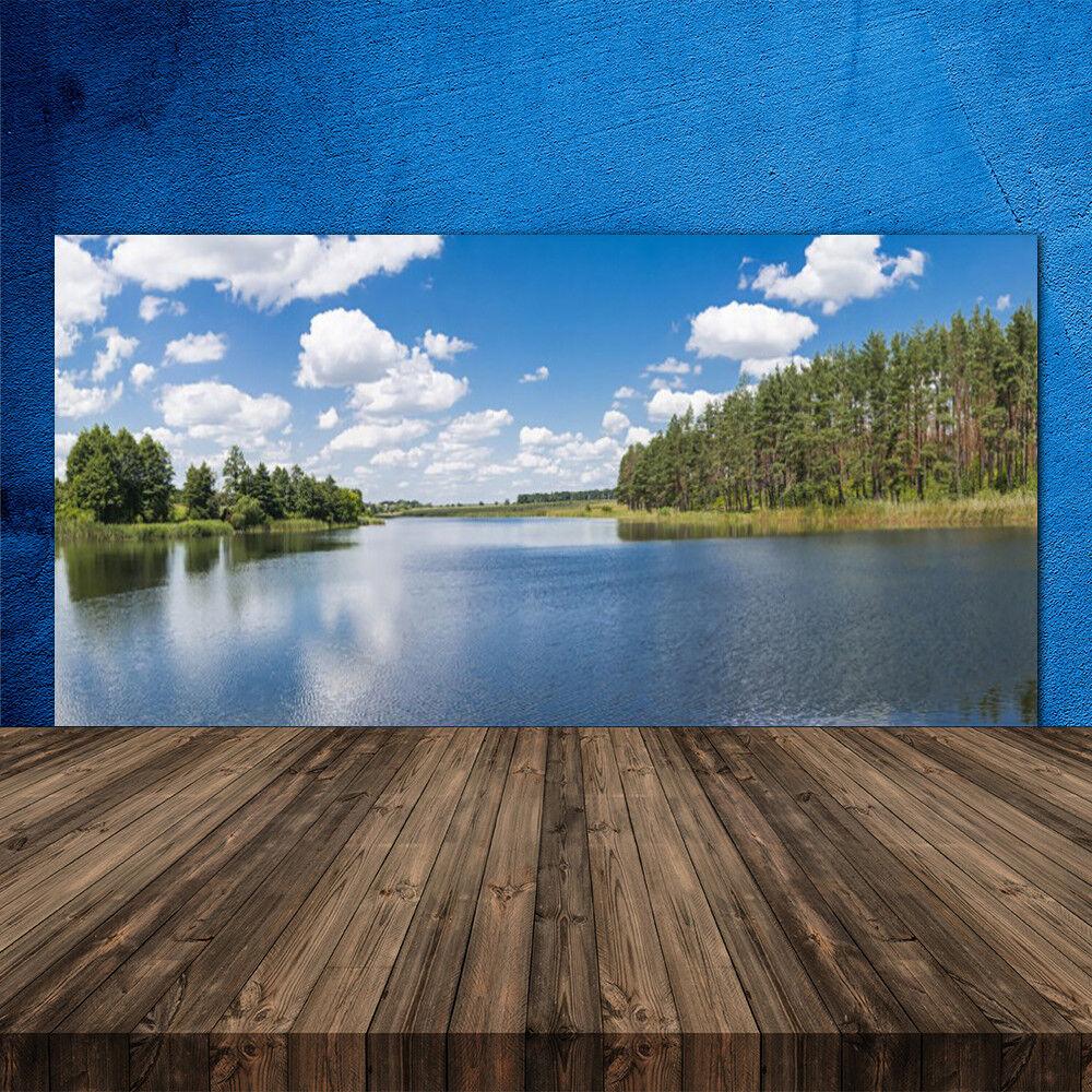 Crédence de cuisine en verre Panneau 120x60 Paysage Forêt Lac